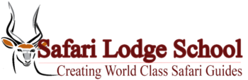 Safari Lodge School